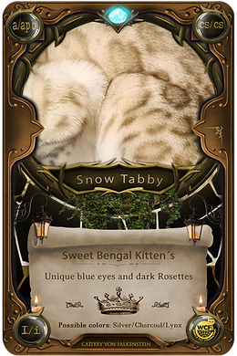 Card Table - Snow Kitten.png