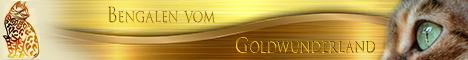 Bengalen vom Goldwunderland