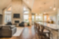 Living Room Design, Window Treatments, Furniture, Lighting, Fireplace Design