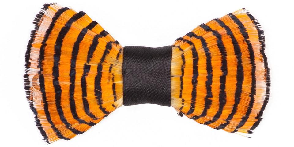 TIGER / TIGRE