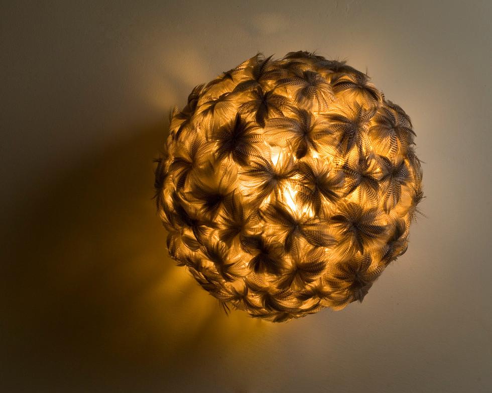 LAMP I