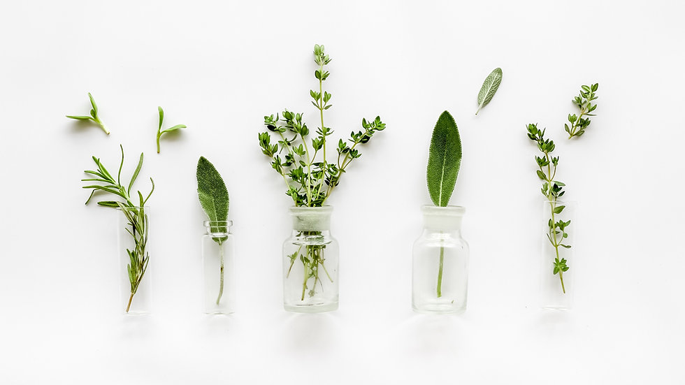 Herbs_edited.jpg