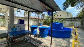 Importancia del uso de Hipoclorito de Sodio como desinfectante en los tratamientos de agua.