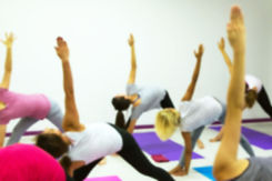Group Of People Practicing Yoga At Healt