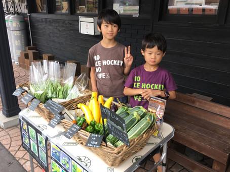 軽井沢の自家菜園朝採りやさい販売中