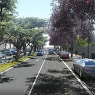 Update of the urbanization project of Passeig de Pi Tort