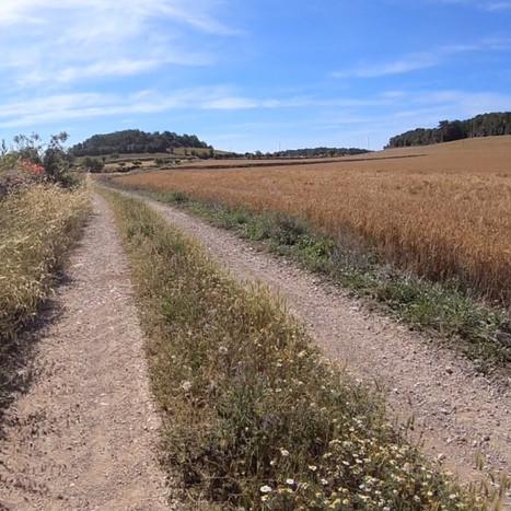Intercatalan Cycle-touristic Way