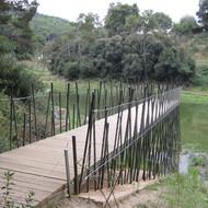 Paths and itineraries around the Vallvidrera reservoir in Collserola Park