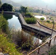 Improvement Director Plan of the water network of Copons