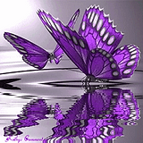 Purple-Butterflies-butterflies-35243887-