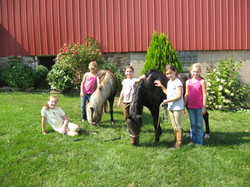 summer camp cute ponies