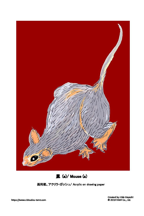 鼠(a)/ Mouse (a)