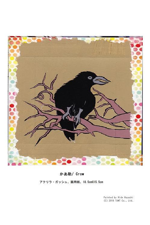 かあ助/ Crow