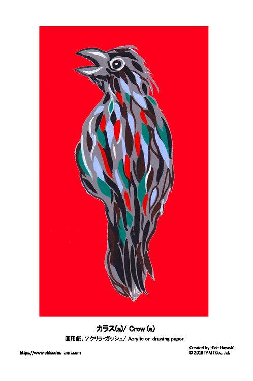カラス (a)/ Crow (a)
