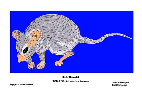 鼠 (d)/ Mouse (d)