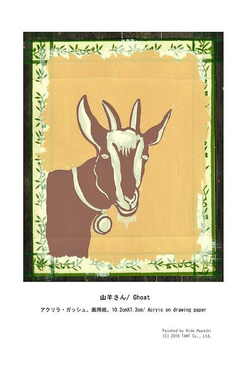山羊さん/ Ghoat