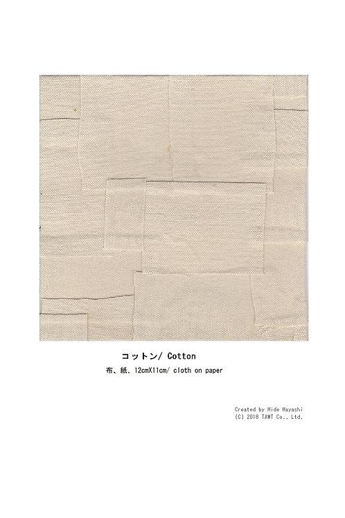 コットン/ Cotton