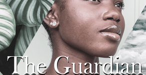 Book Review: The Guardian by EB Dawson