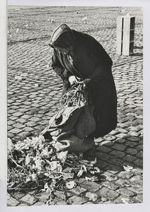 03.02.01 Eine andere alte Frau sucht im Kehricht