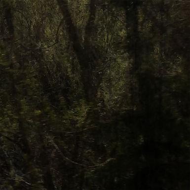 11. Still En Tre - Ivonne Sheen.jpg