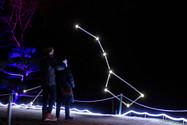 Constellations by Brandin Hurley. Lightscape 2020.