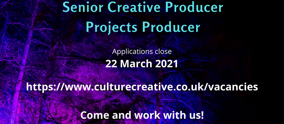 SENIOR CREATIVE PRODUCER |  PROJECTS PRODUCER