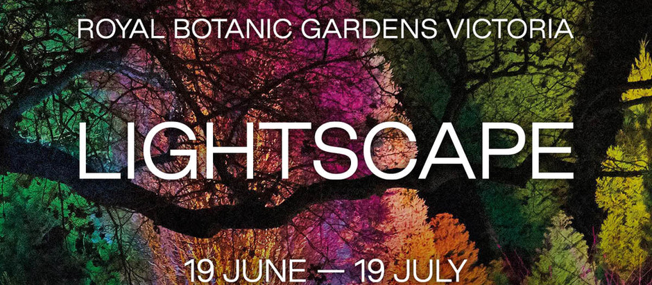 Australian debut of Lightscape