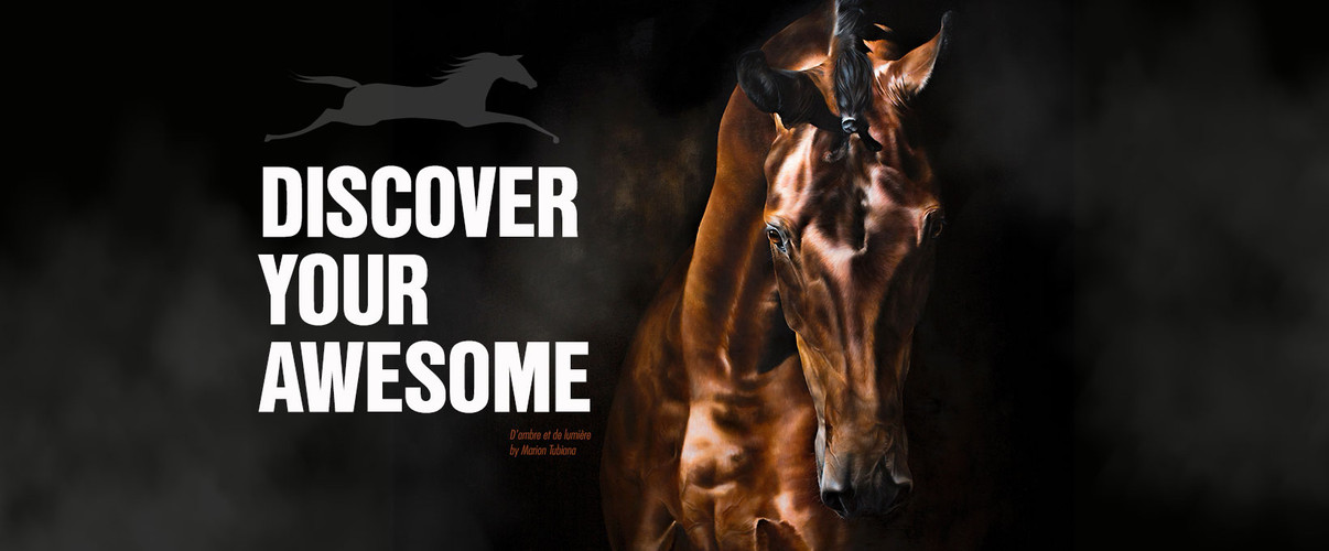 world equestrian ad.jpg