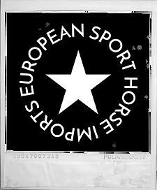 eshi logo polaroid.png