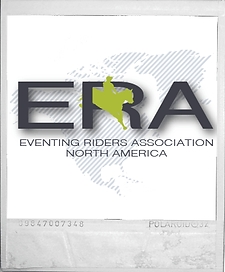 equestrian business branding