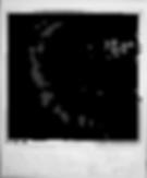 clm dwn polaroid.png