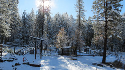 Snowy Yard and Swing Set