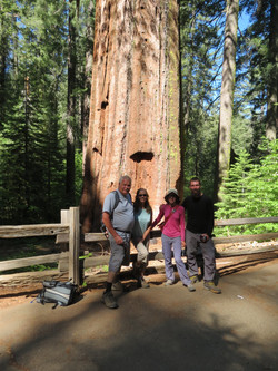 With friends at Tuolumne Grove