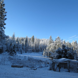 Our Snow Covered Meadow