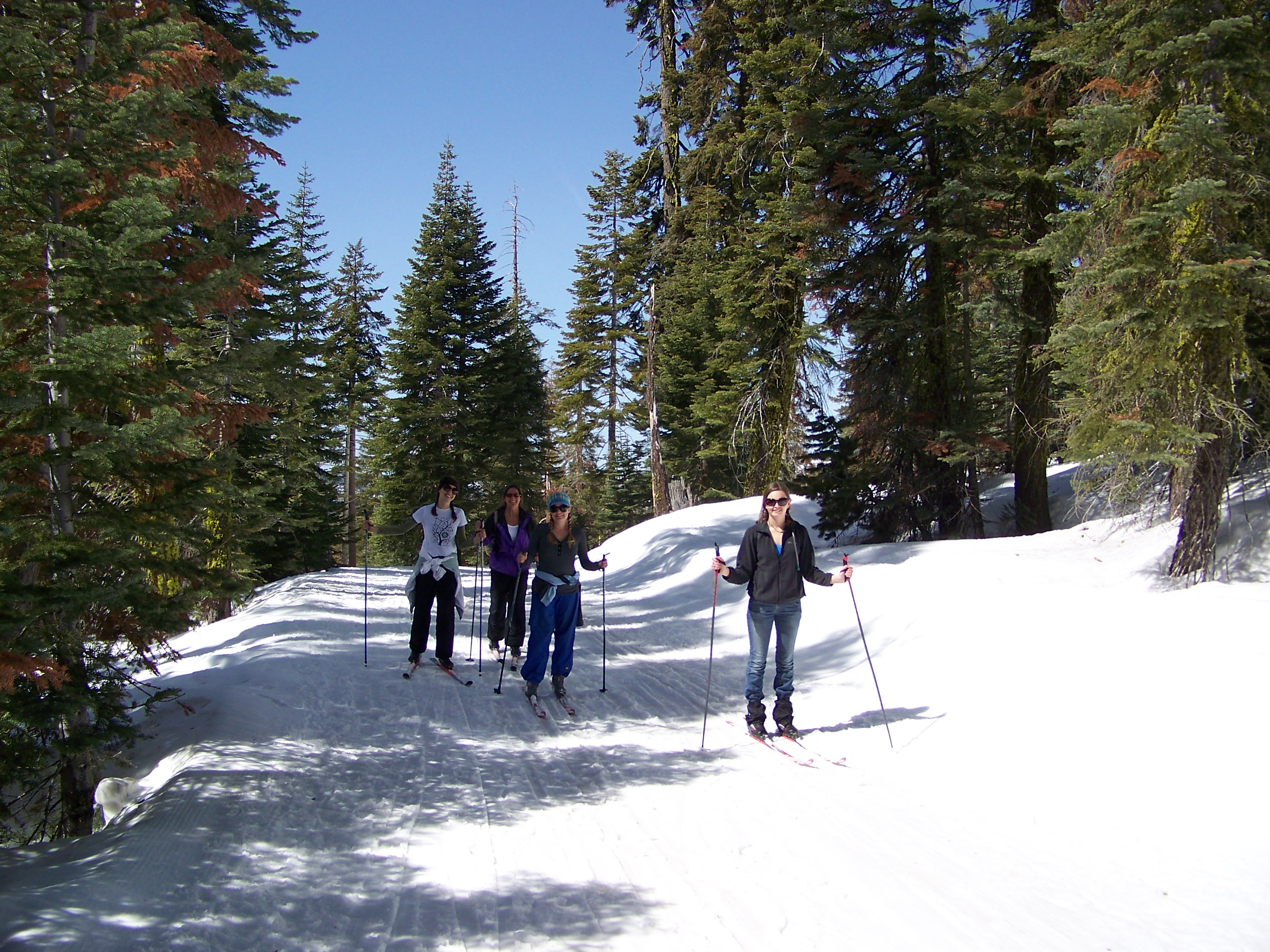 Skiing on Glacier Point Road