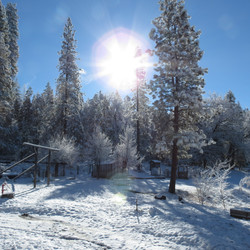 Snow Covered Grounds