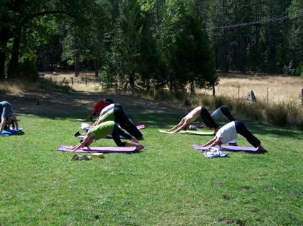 Occasional Yoga in the Meadow