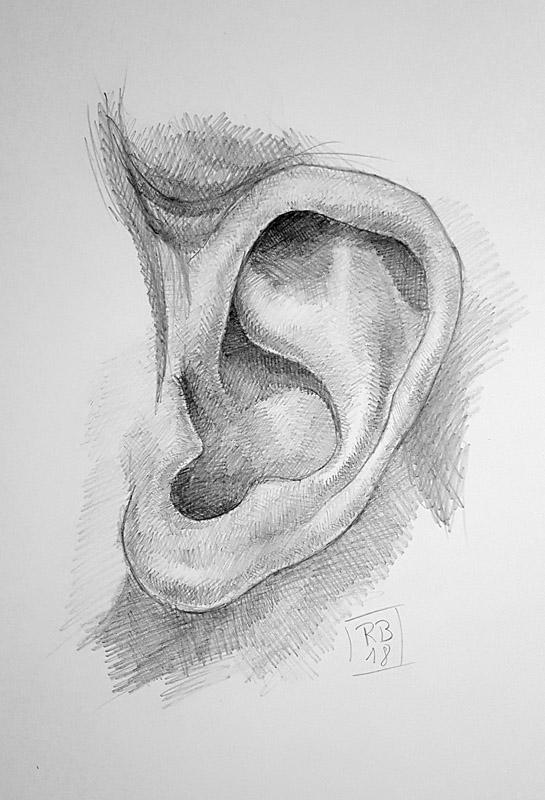 RB-Arts - Cours de dessin (6)