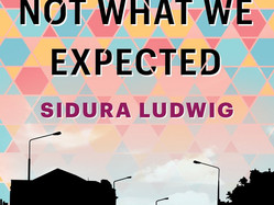 You Are Not What We Expected by Sidura Ludwig