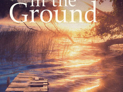 Down in the Ground by Bruce Meyer