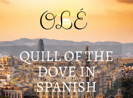 Quill of the Dove in Spanish!