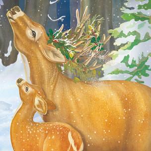 """""""Der kleine Waschbär wartet auf Weihnachten"""""""