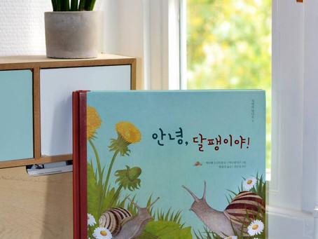 Meine Schnecke zieht nach Korea