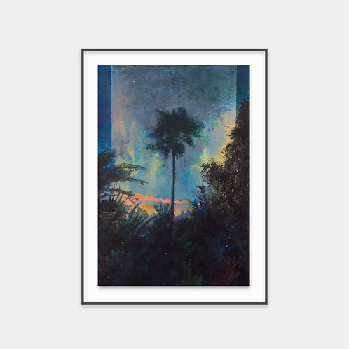 Nocturnal_palm / 2018 - Limited Edition Archival Fine Art