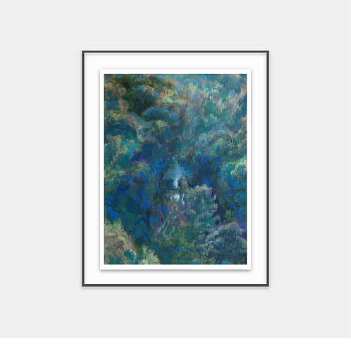 Deep Forest Study / 2018 - Limited Edition Archival Fine Art Print