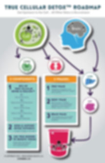 detox roadmap.jpg