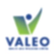Valeo_logo-01.png