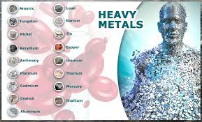 heavy metals dude.jpeg