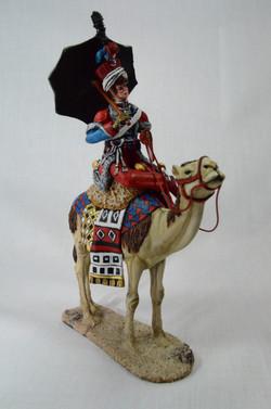 Napoleons Dromedary troops mounted.
