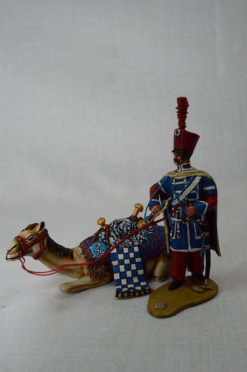 Napoleons Dromedary troops standing by sitting camel